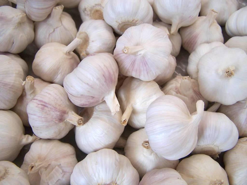 Come eliminare odore di aglio e cipolla dalle mani: trucchi e consigli