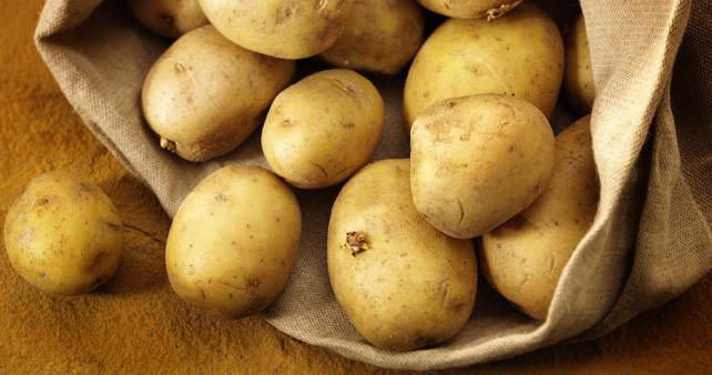 patata3 (1)