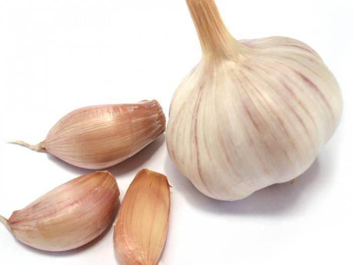aglio (1)