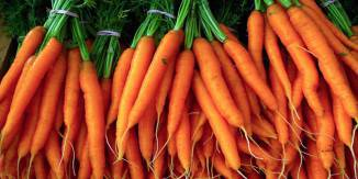 Le-carote-5-800x400-800x400