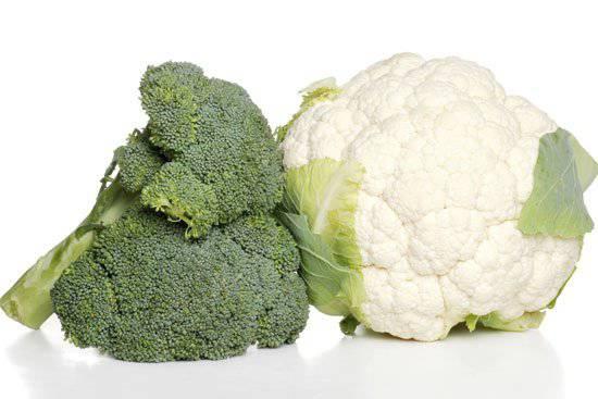 12 Alimenti Per Prevenire Il Cancro