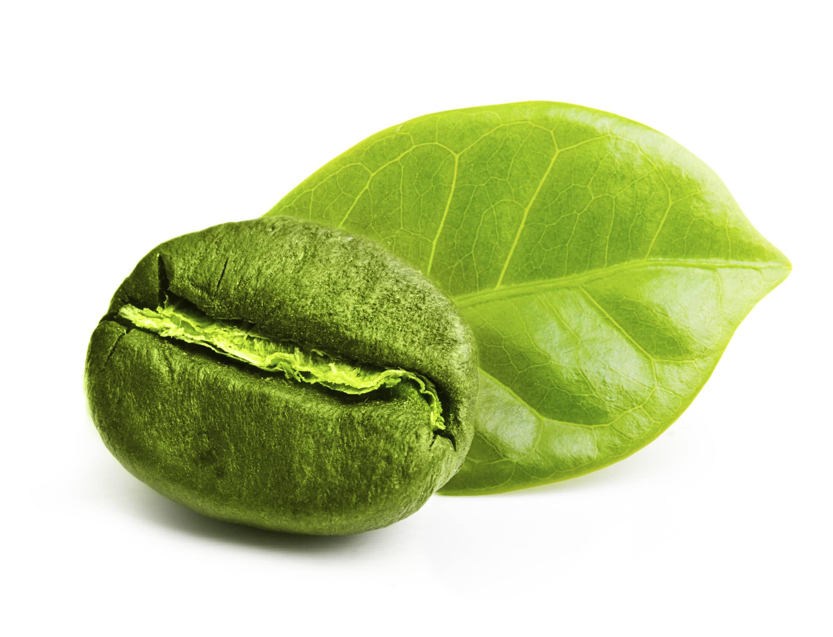 Caffè verde: cos'è, proprietà, uso e consumo