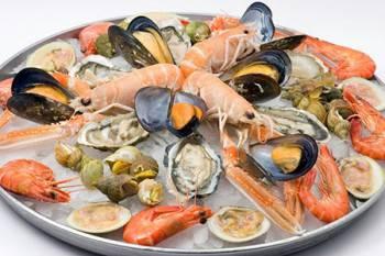 crostacei-e-molluschi