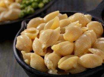 Creamy Shells and Cheese Sauce