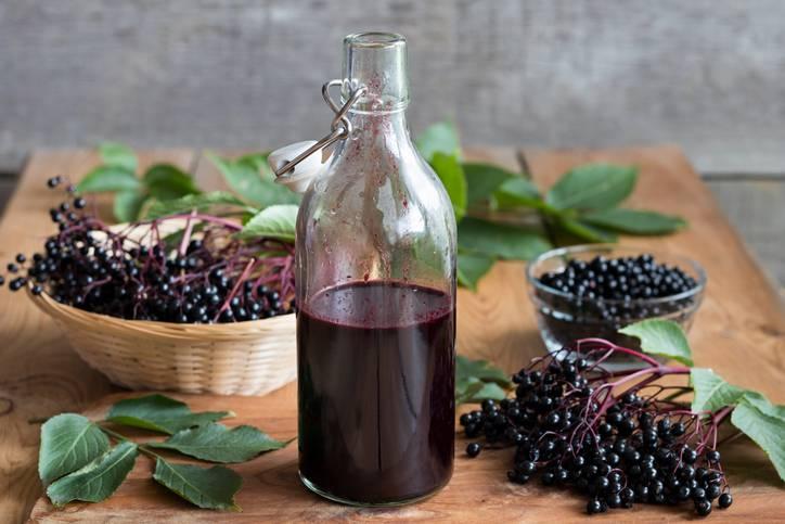 Liquore di sambuco: un'antica ricetta della nonna