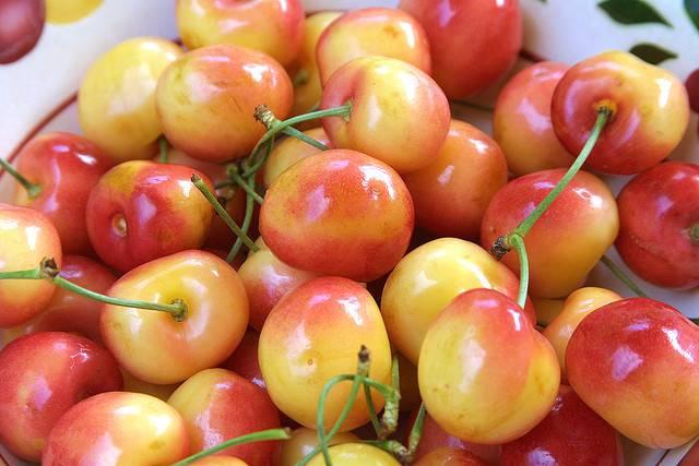 Succo di ciliegie per 5 giorni migliora la salute dell'intestino