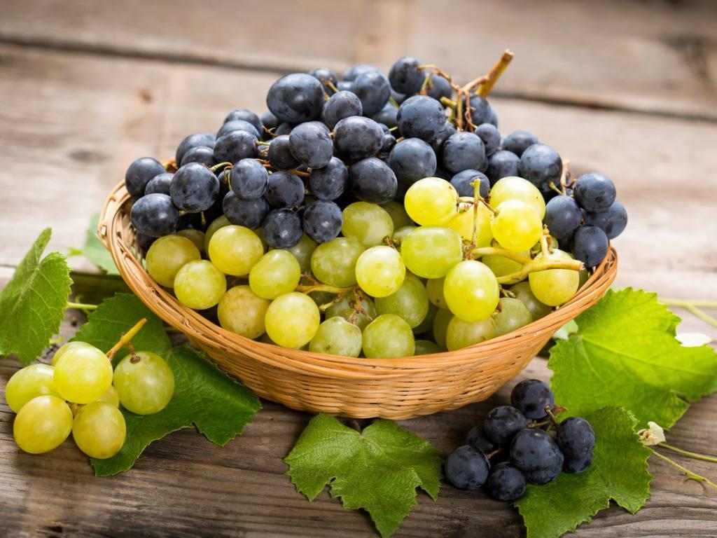 Non solo ricca di benefici: l'uva è anche un elisir di bellezza