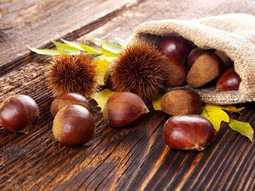 Frutta d'autunno, perché le castagne fanno bene al nostro corpo