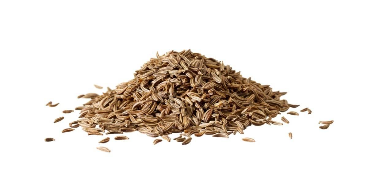 Olio di semi di cumino nero: antico elisir di lunga vita