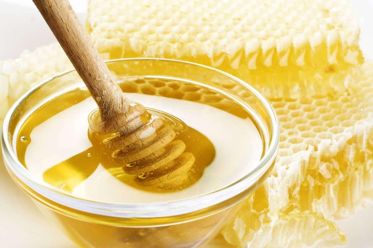 Clima impazzito: la produzione di miele italiano è azzerata