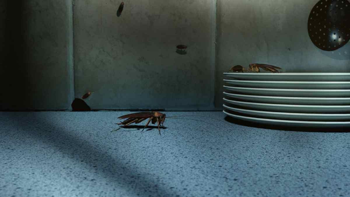Rimedi naturali contro gli scarafaggi in casa