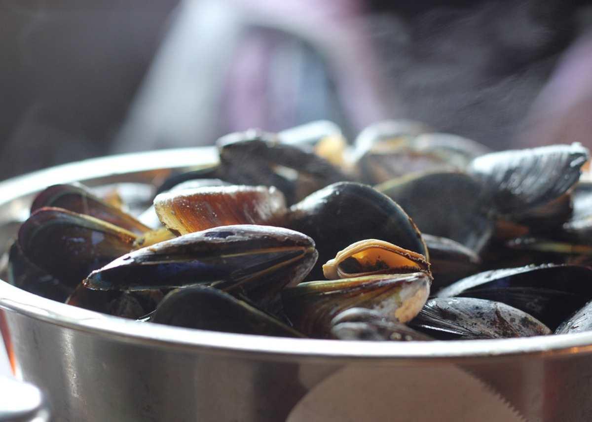 Come riconoscere le cozze fresche in pescheria: trucchi e consigli