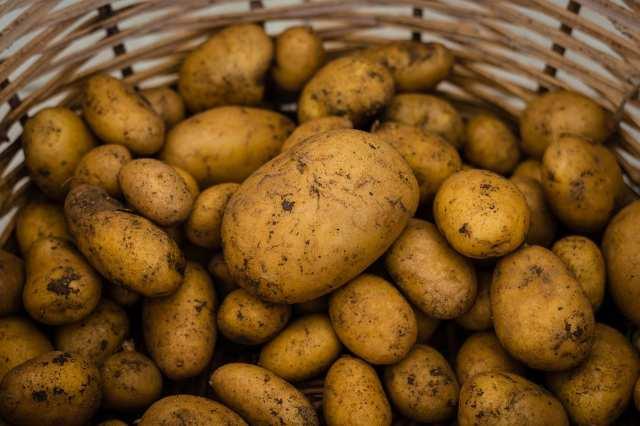 Cuocere le patate al forno: non commettete anche voi questi errori