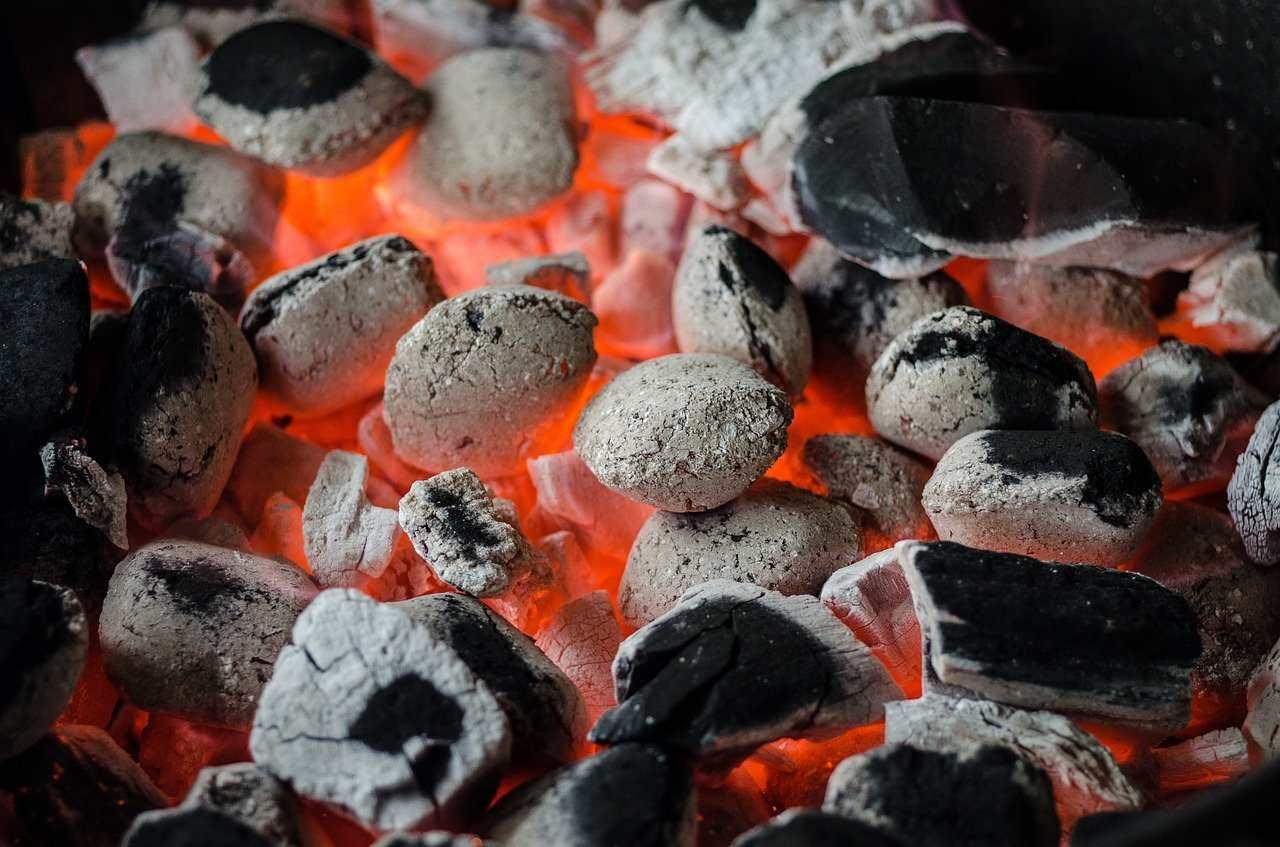 Cosa cuocere sul barbecue (oltre la carne) quando si va in gita in montagna