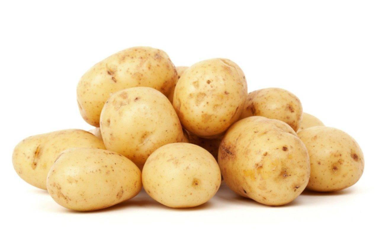 Bastoncini di patatine