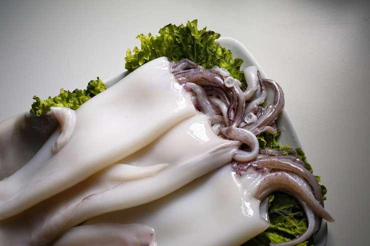 pulire e tagliare calamari