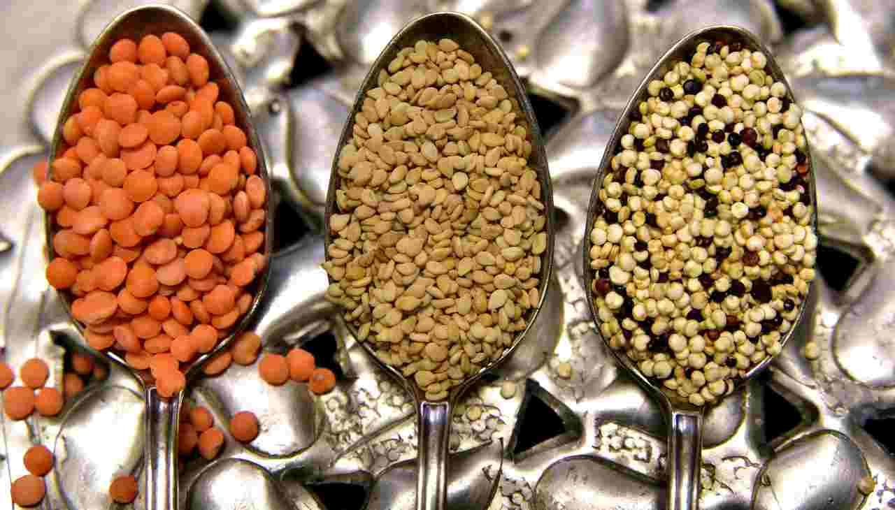 tipologie di lenticchie