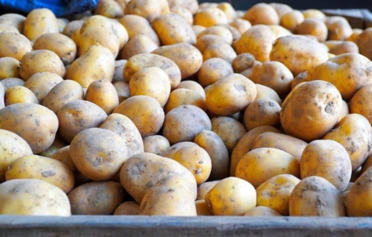 Tortino di patate non classico