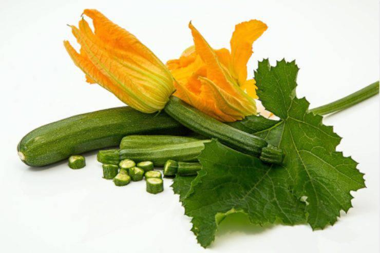 Pennette integrali con zucchine e salmone: la ricetta healty per chi tiene alla linea