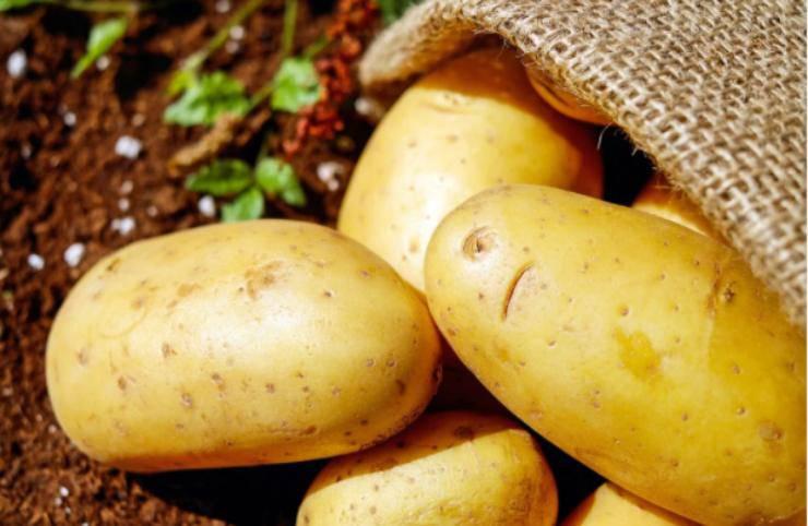 Polpette di patate con sorpresa: la ricetta semplice che farà impazzire tutti