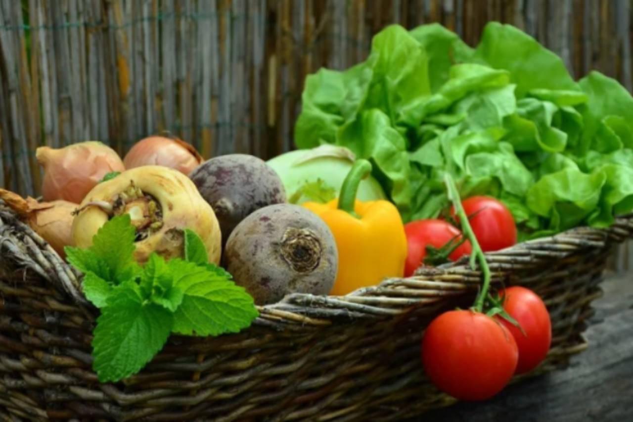 Caponata di verdure: il contorno semplice ed economico pronto in 20 minuti