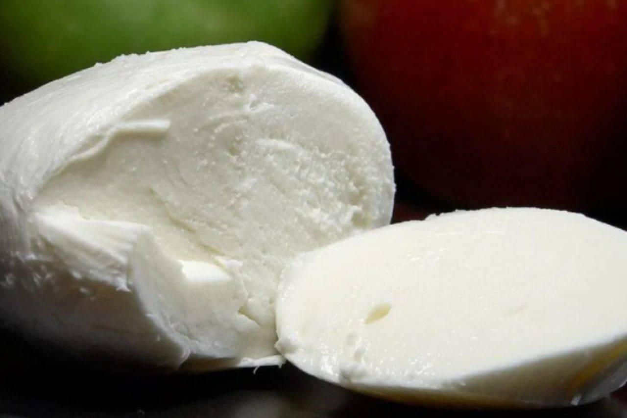 Mozzarella in carrozza: il secondo gustosissimo, facilissimo da preparare
