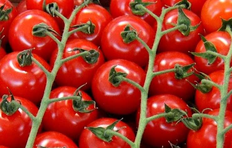 Pasta pomodorini pesto