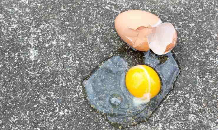striscia bianca del'uovo