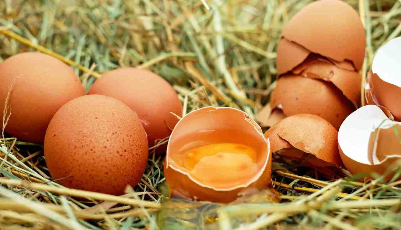 striscia uovo crudo