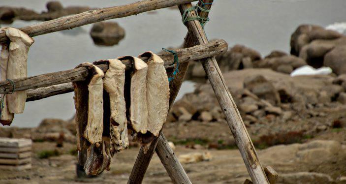 pesce stocco per tortino, ricetta