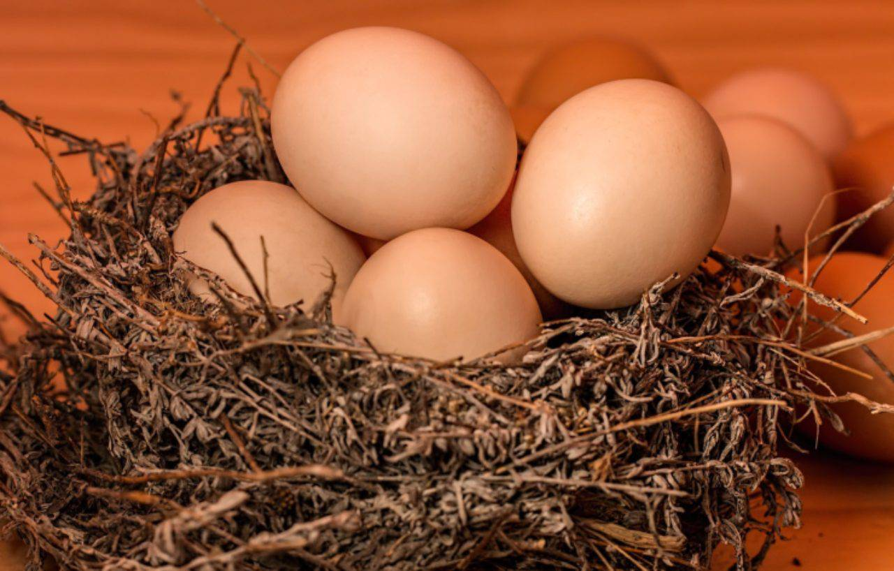 Uova cotte in forno: il trucco facile e velocissimo per un piatto originale e squisito!