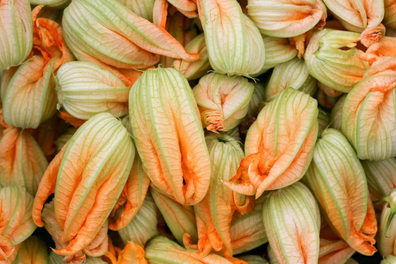 Fiori di zucca ripieni: la panatura che li renderà super croccanti (Fonte foto: Pixabay)