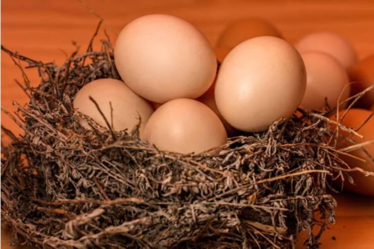 Uova alla contadina: 3 ingredienti per una piatto velocissimo e gustoso