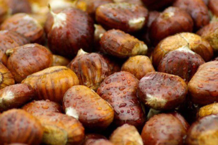 Come rendere le castagne morbide e fragranti: il 'segreto' che quasi nessuno conosce