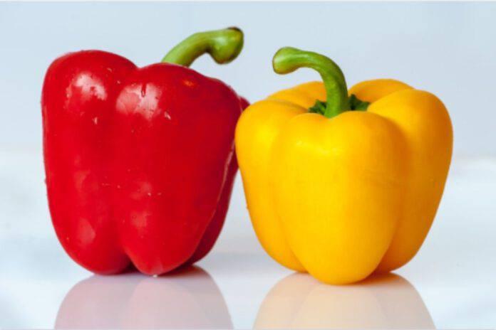 Peperoni ripieni con solo 4 ingredienti: la ricetta gustosissima pronta in 30 minuti