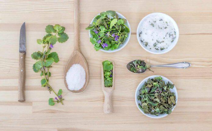 Sciapo o salato: è questo il dilemma. Come sostituire il sale in cucina