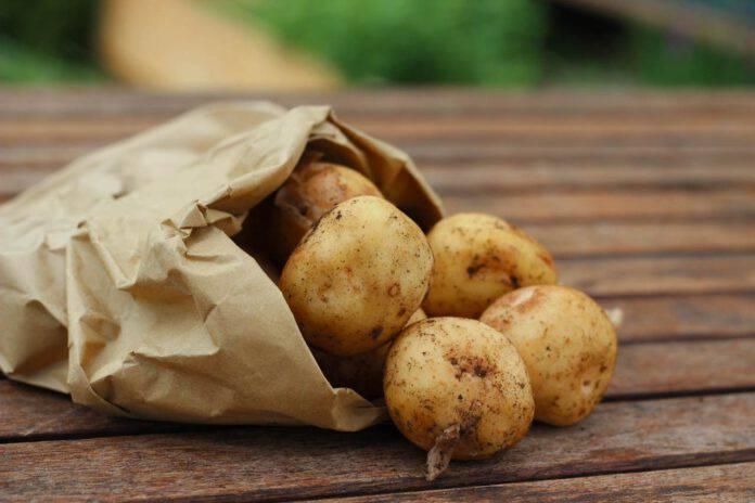 Pasta e patate: aggiungi questo ingrediente ed avrà un sapore in più