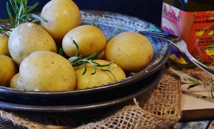 patate contorno