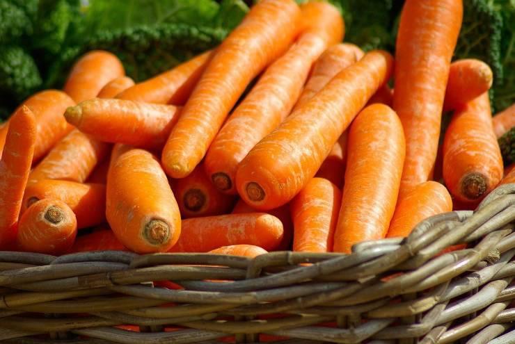 carote fresche