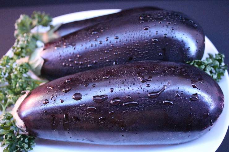melanzana lunga