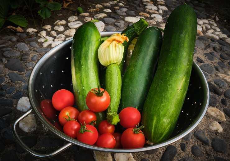 zucchine e pomodorini freschi