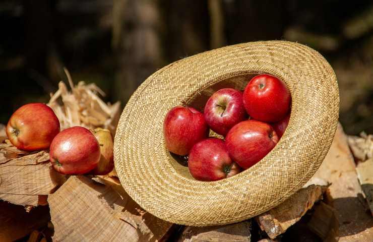 Strudel di frutta vegano senza glutine ricetta veloce