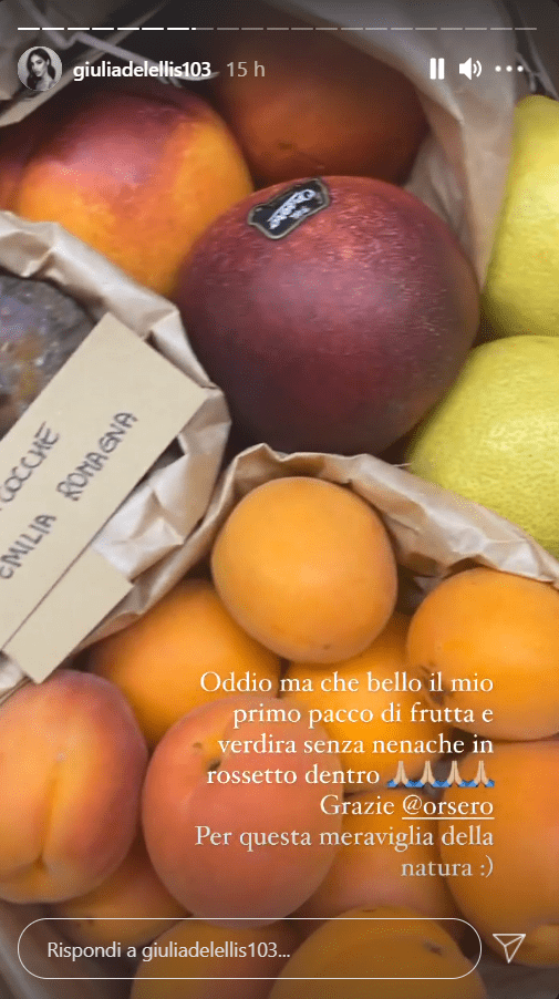 Giulia De Lellis pacco frutta verdura regalo foto