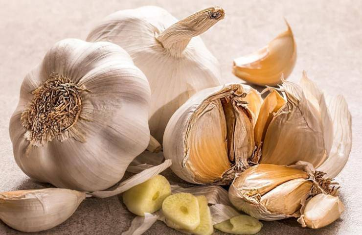 Stik di pane all'aglio: sfizio antipasto
