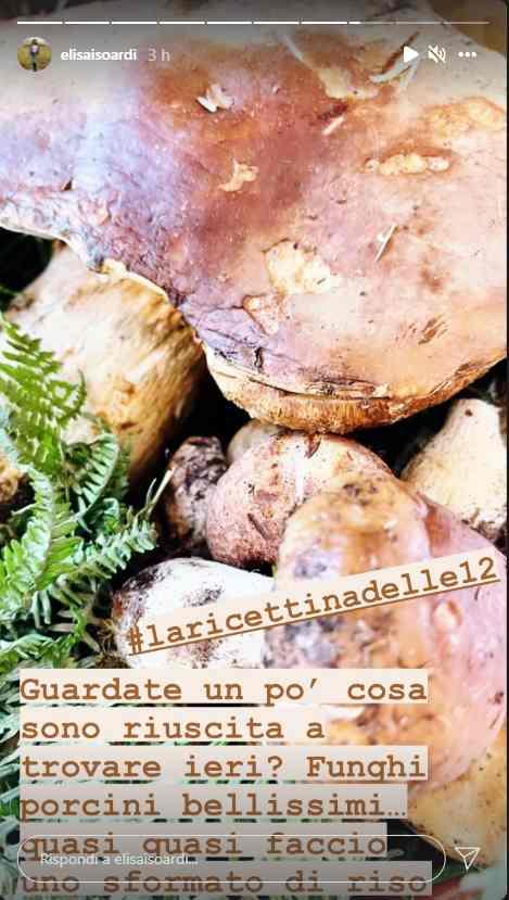 Elisa isoardi - porcini